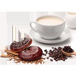 خرید قهوه گانودرما