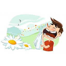 تاثیر گانودرما روی آسم