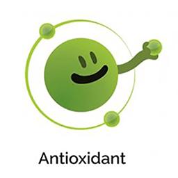 خاصیت آنتی آکسیدانی گانودرما