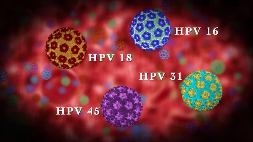 انواع hpv