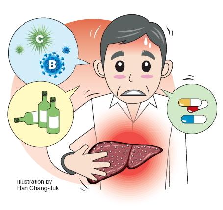 تاثیر گانودرما روی کبد